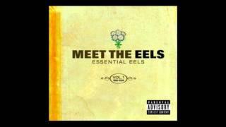 Watch Eels Mr Es Beautiful Blues video