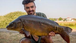 JETZT STEHEN DIE KARPFEN TIEF freestylefishing