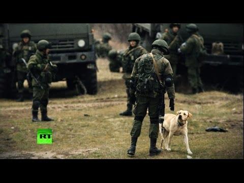 Западные журналисты убедились, что Россия не вторгалась в Крым