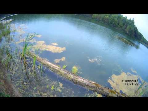 отчеты о рыбалке озеро охват
