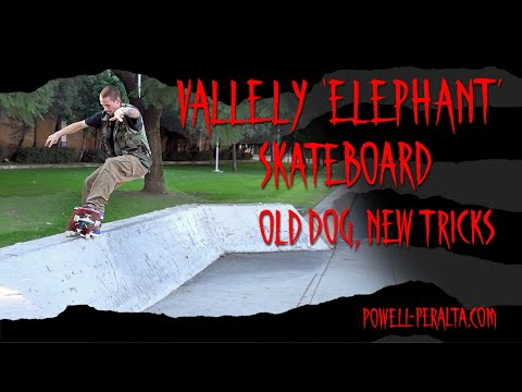 "'Old Dog, New Tricks' - Vallely ""Elephant"" Skateboard"