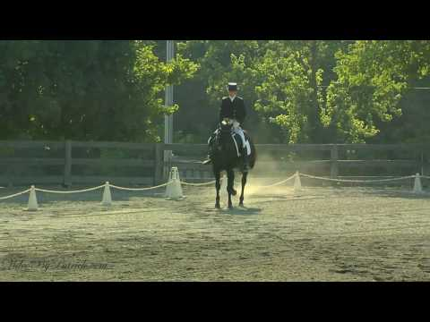 Lucy Tidd on GKB Coal Magic, FEI PSG, Heavenly Waters Dressage, 6/20/2010 Video