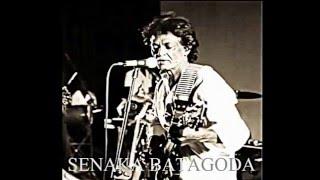 Api Kawruda - ORIGINAL of Senaka Batagoda