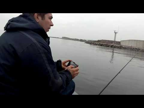 как ловить судака на дамбе