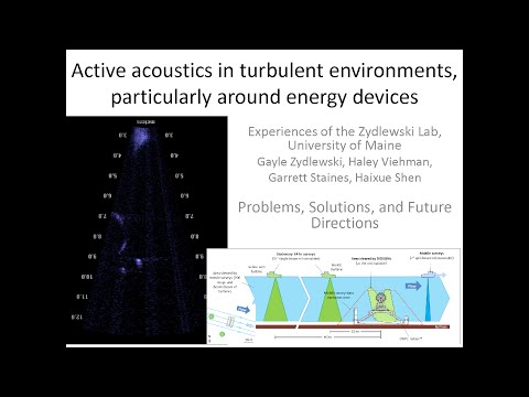 Expert Forum #1: Analyzing Acoustic Data around Marine Energy Devices