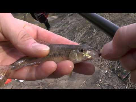 магазины охоты равно рыбалки во  сарове
