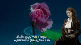 FLORENTINA COSTEA - Trandafirlu anjiurdzeashti