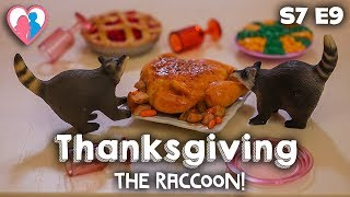 "S7 E9 ""Thanksgiving (The Raccoon!)"" 