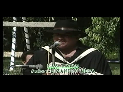 LISANDRO MEZA (EXITOS)
