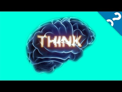5 Ridiculous Myths About Your Brain | What the Stuff?!