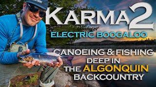 Karma 2  -  Electric Boogaloo
