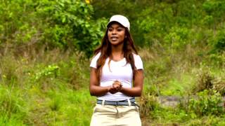 HolidaySwapKZN Season 1 Episode 10