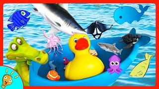 Learn SEA and WATER Animals with in Pool Tub Toy