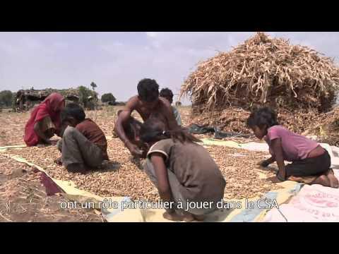 FAO et Organisations de la Société Civile: Un partenariat pour éradiquer la faim