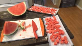 Harvest Right Freeze Dryer - Watermelon
