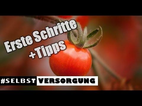 DIY: SELBSTVERSORGUNG - Obst & Gemüse | Erste Schritte + Tipps | Max GREEN
