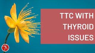 TTC Thyroid | 4 Tips