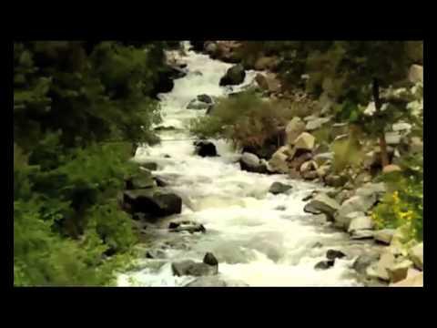 DCMP - Water Supply (UK Hip Hop) - Fluoride Deception