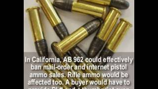 California gun laws  Mail-Order Ammo Ban Starts February 1, 2011