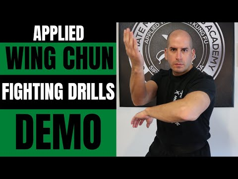 Applied Wing Chun Techniques Image 1