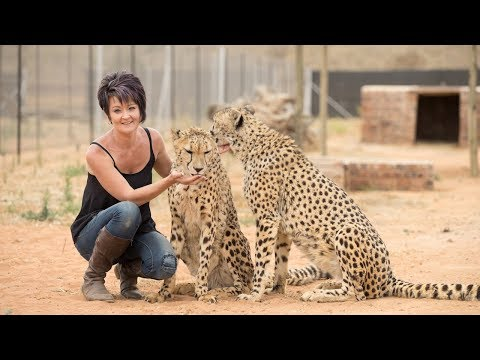 Petite Woman Is Best Friends With Big Cats | BEAST BUDDIES