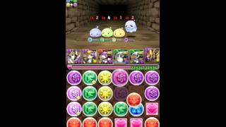 [Puzzle & Dragons] Tower Of Poring - Yomi X Anubis Team
