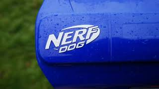 Nerf Dog ball thrower first use.