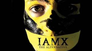 Watch Iamx She video