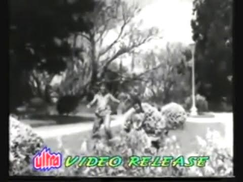 Mujhe Kitna Pyar Hai Tumse..film Dil Tera Diwana video