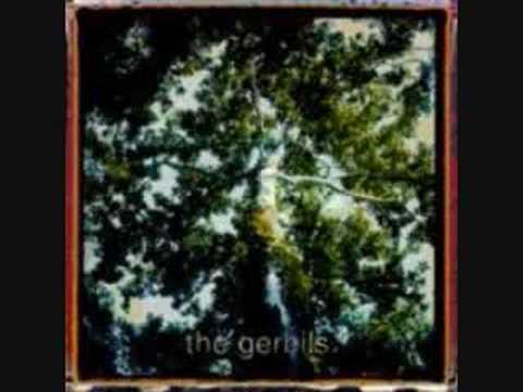 Gerbils - Crayon Box