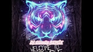 Alvaro&Mercer feat.Lil Jon-Welcome To The Jungle-DJ GÜMÜŞ REMİX