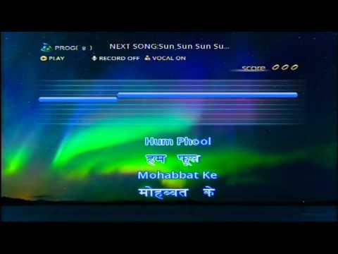 Hum Aap Ki Ankhon Mein (Persang karaoke Demo Song)