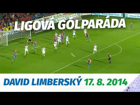 Ligová gólparáda - David Limberský