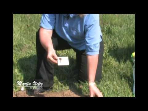 Martin Viette Lawn Seeding