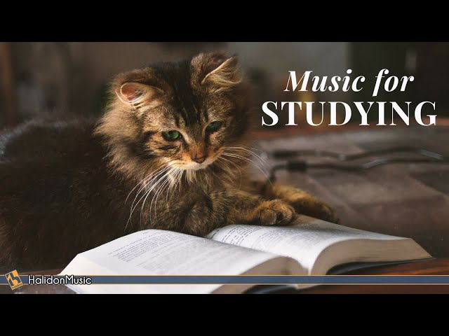 Classical Music for Studying  Brain Power  Mozart, Vivaldi, Tchaikovsky...