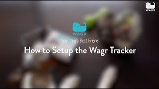 Getting started with Wagr #2 - Set up the Wagr tracker