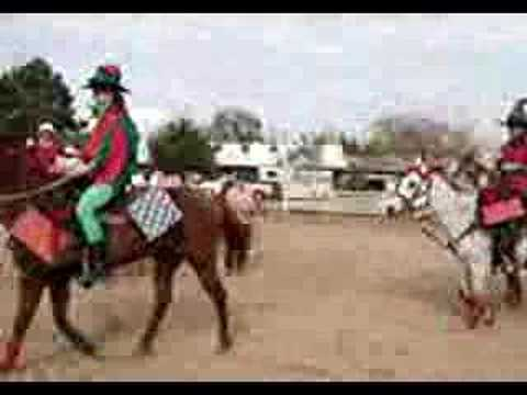 Elf Express – Horses dressed up for Christmas