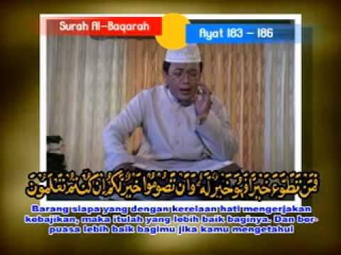 Qiroah Kh Muammar Za   Al Baqarah 183   186 video
