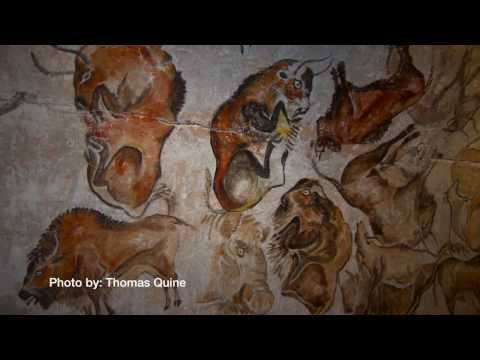 Russell Tuttle on Human Evolution: A Distinct Species
