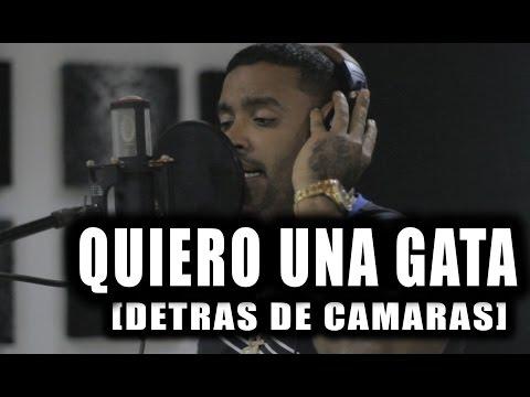 Baby Rasta Y Gringo, Zion Y Lennox, Alexis Y Fido y Más – Quiero Una Gata (Detrás de Cámaras) videos