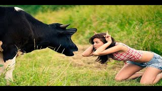 funny video compilation  try not to laugh challenge impossible hardest version