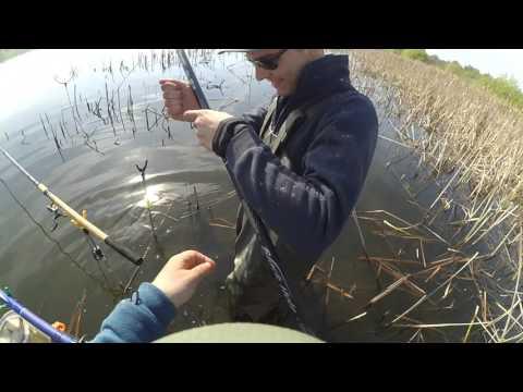 ютуб все о весенней рыбалке на карася