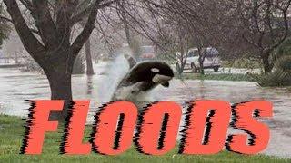GSM News-Major Crop Loss,France/ Flooding throughout Europe ,Yemen,Oman & Sir Lanka