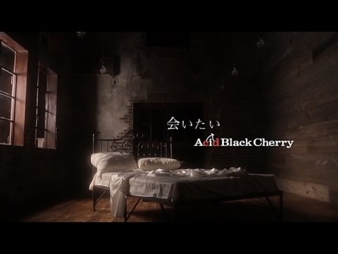 Acid Black Cherry - Aitai