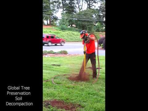 Tree preservation order for Don gardner arborist