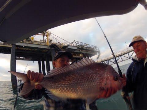 Shark Bay Fishing 2014 - GoPro