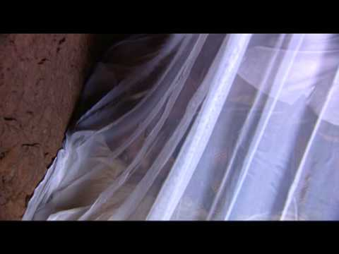 UNICEF: Malaria Initiative - saving lives with mosquito nets