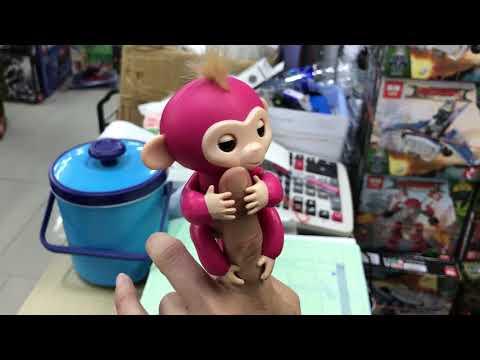 ลิงเกาะนิ้วสุดแสนน่ารัก fingerlings monkey