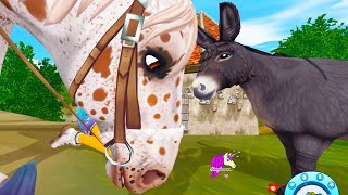 Mini Donkey Search ! Star Stable Online Horse Quest Video