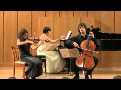 Шопен Фредерик - Трио для фортепиано, скрипки и виолончели